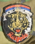 WELL WORN AND MOTH EATEN ARKAN'S TIGERS MILITARY INSIGNIA